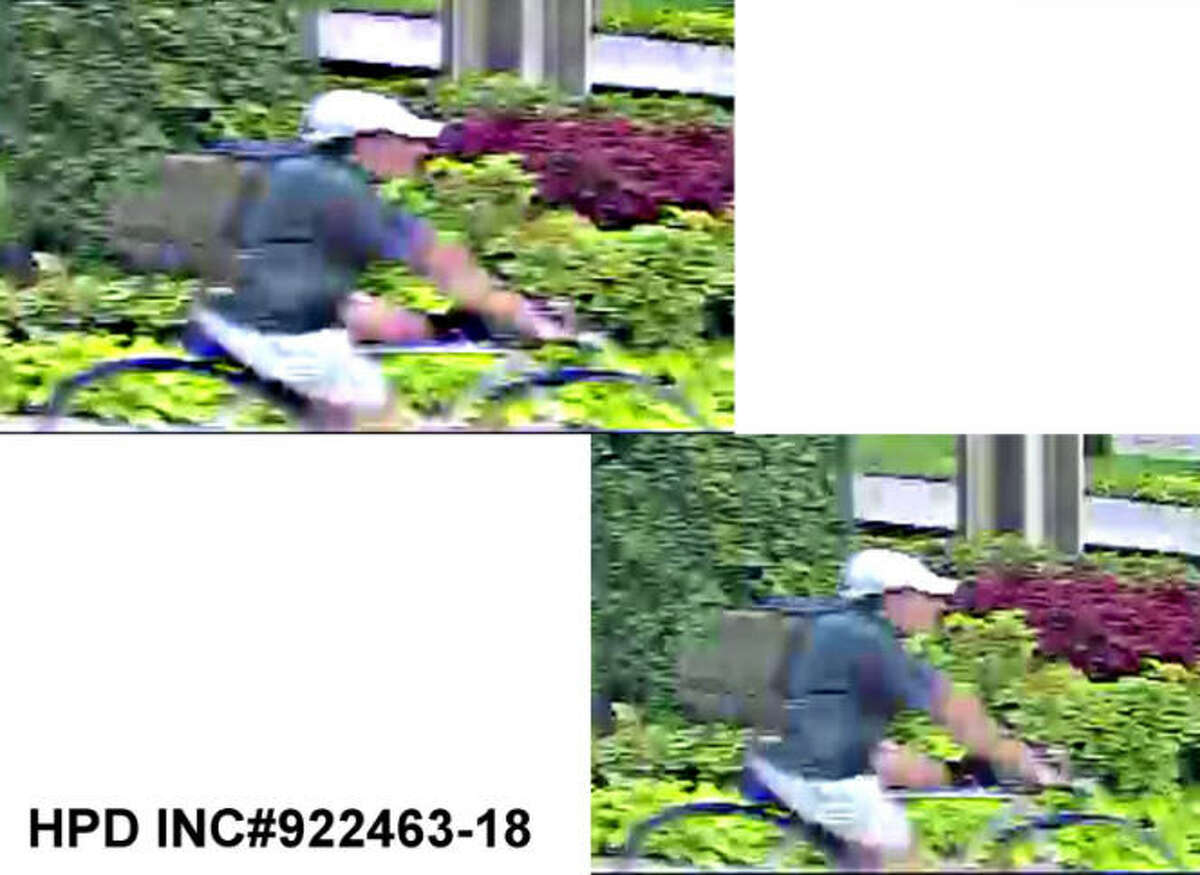 Surveillance photos released by the Houston Police show a suspect wanted in the killing of Dr. Mark Hausknecht on Friday, July 20, 2018. The suspect is described as wearing a blue, short-sleeved polo shirt, a khaki ball cap and khaki shorts at the time of the shooting. He carried a large, olive green backpag,.