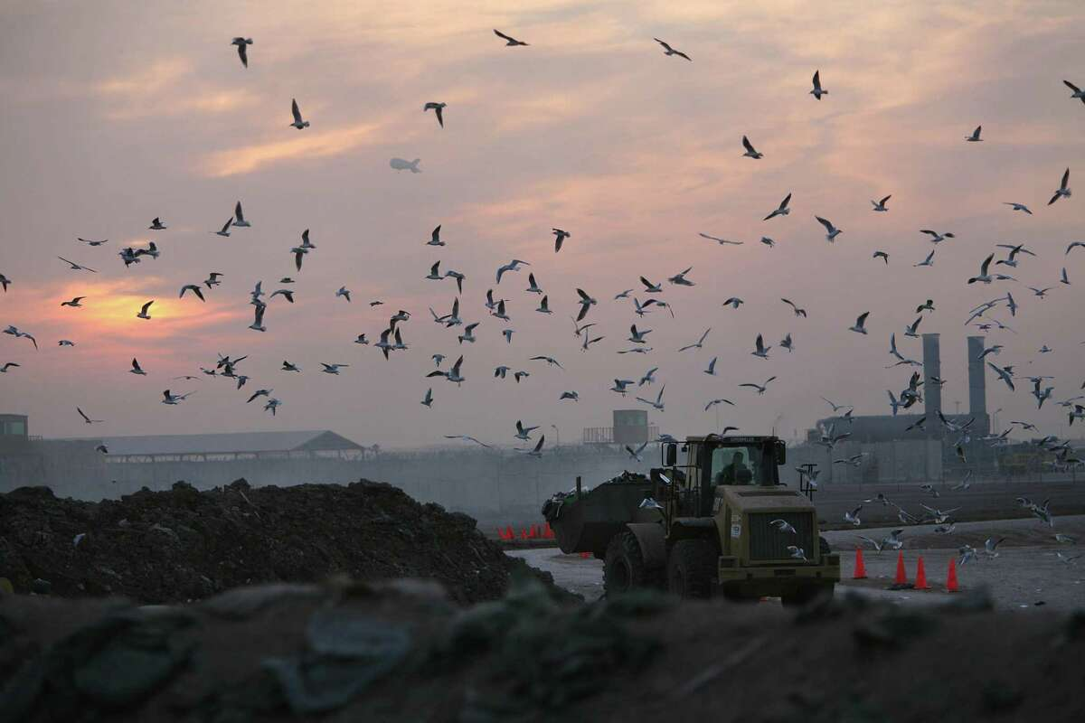 Birds flock around a tractor moving trash into a burn pit at Camp Taji, where hundreds of soldiers from the 72nd Infantry Brigade Combat Team live and work. The soldiers complain of headaches, coughs, and sore throats, irritated eyes and skin rashes. Photos taken on Jan. 17, 2010 in Iraq. Mayra Beltran / Houston Chronicle
