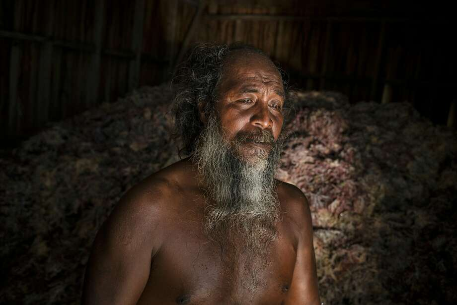 David Tebaubau, a seaweed farmer who lives on Makaru Island, part of the Solomon Islands. The spit of earth he currently occupies here in this remote stretch of the South Pacific is half the size it was when he arrived five years ago. In many parts of the Solomon Islands, the land has disappeared, drowned by heaving currents and rising seas. Photo: Adam Ferguson / New York Times