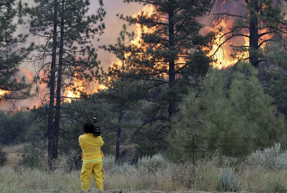 Here are the dumbest, most careless human causes for wildfires that we could find.