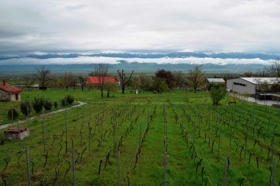 This undated photo shows a vineyard in the Republic of Georgia's Kakheti region, with the Caucasus Mountains in the distance. In addition to ancient winemaking traditions, this beautiful and affordable country has many attractions for both budget and sophisticated travelers including 1,000-year-old churches, wild mountains offering winter and summer splendor and even coastal resorts on the Black Sea.  (Kevin Begos via AP) Photo: Kevin Begos / Kevin Begos