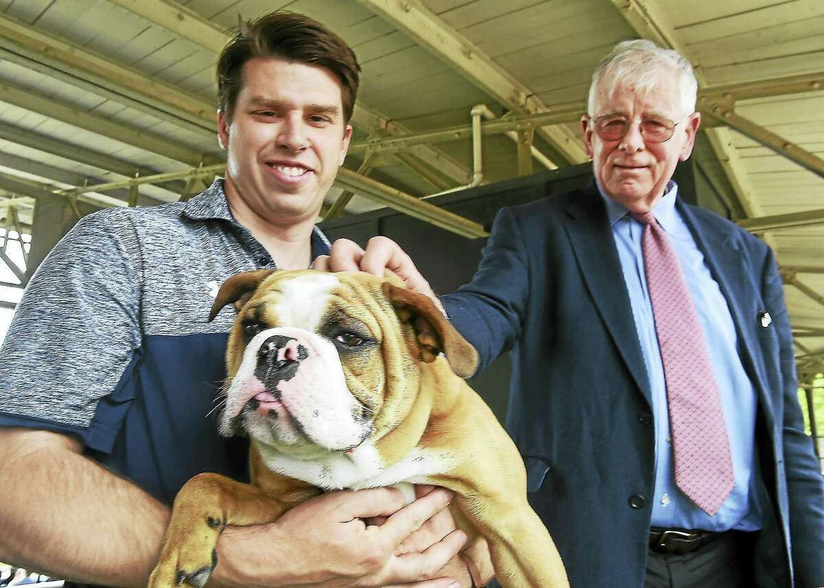 In this file photo, Kevin Discepolo, assistant athletic director of Facilities, Operations, & Events, left, as caretaker of the Yale University mascot Walter, an English Bulldog, at Yale Field with Chris Getman of Hamden, 75, Yale class of '64, the former