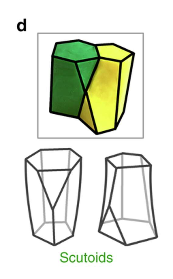 "Researchers at the University of Seville have discovered a new geometric shape — the ""scutoid"" — in skin cells. Photo: University Of Seville Via Nature"