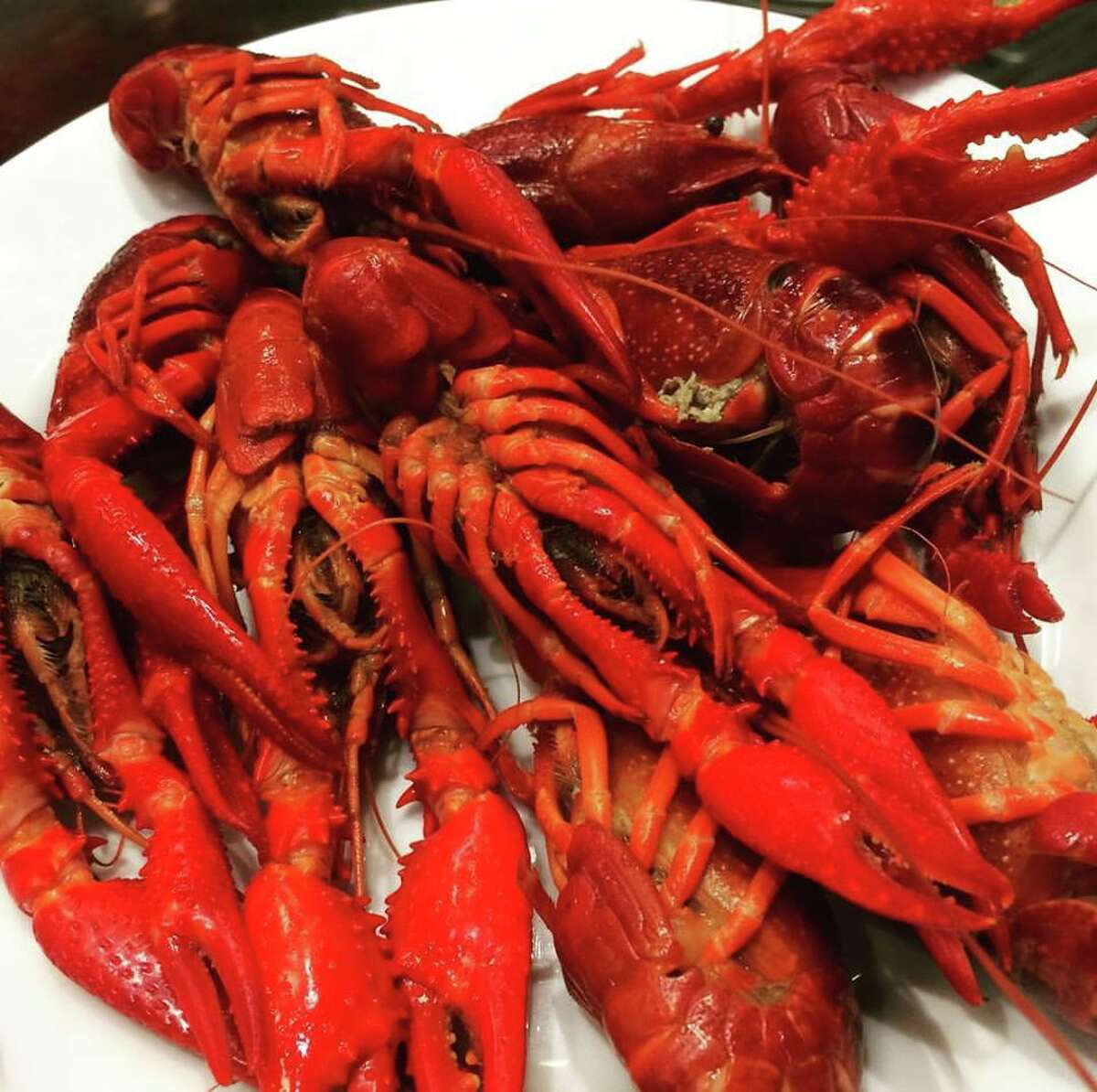 Crayfish served during an all-you-can-eat party at Ikea in New Haven in 2017.