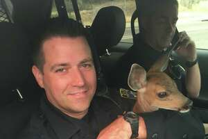 The California Highway Patrol shared a photo of Sgt. Dave Fawson, the officer who rescued a fawn from inside the Carr Fire line on July 28, 2018.