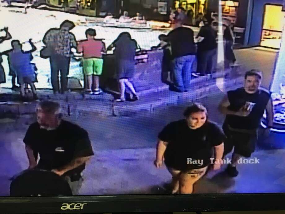 San Antonio Aquarium surveillance footage showing persons of interest in the stolen shark case. Photo: Leon Valley Police Department