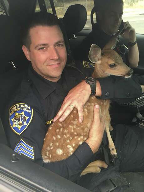 California Highway Patrol Sgt. David Fawson holds a month