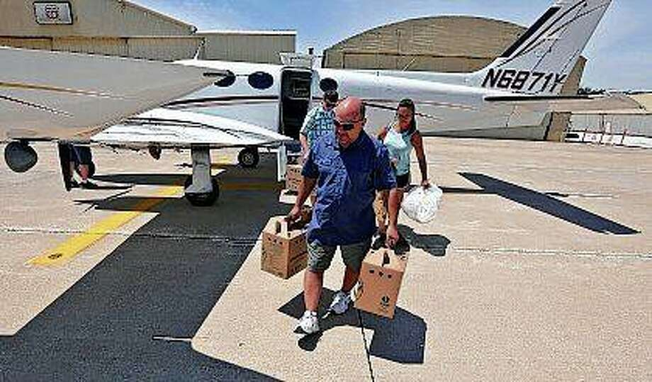 The program director for the Illinois Raptor Center, Jacques Nuzzo, receives three osprey that are 7 weeks old at the Decatur Airport. The center is part of the Osprey repopulation projects funded by the U.S. Fish and Wildlife Service and overseen by the Illinois Department of Natural Resources. An endangered species in Illinois, the effort's goal is to restore the osprey as a nesting species in the state. Photo:       Clay Jackson | Herald & Review (AP)