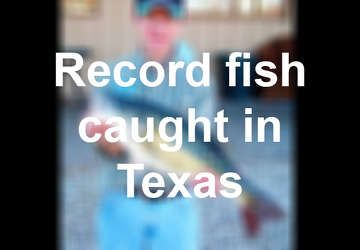 Texas teen reels in first tagged fish of 2019 STAR