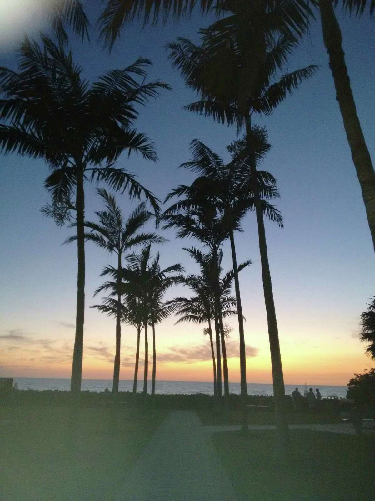 """Lori Keegan-Brady visited Naples Fla. """"We love the palm trees silhouetted by the sunset."""""""