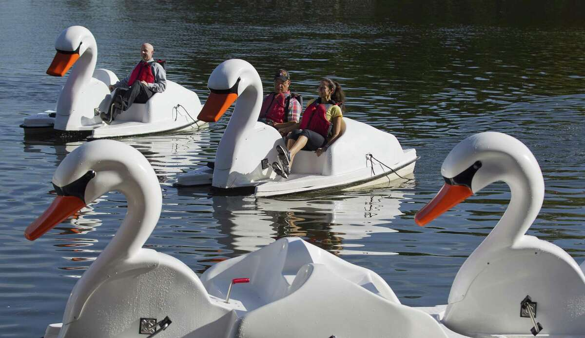Visitors take one of a dozen swan paddleboats out for a spin at Riva Row Park on Tuesday, Aug. 7, 2018, in The Woodlands. The Woodlands Township Board of Directors voted in June to buy ten swan boats for $57,000.