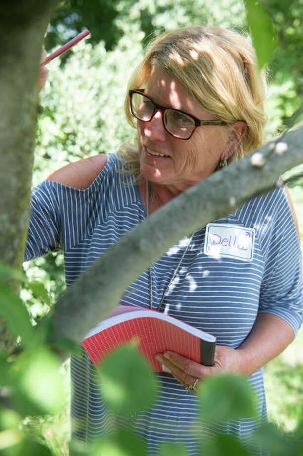 "Della Montgomery, an elementary education professor from Blackburn College, observes a tree during the ""STEM Notebooks: Understanding History Through a STEM Lens"" workshop. Photo:       For The Telegraph"
