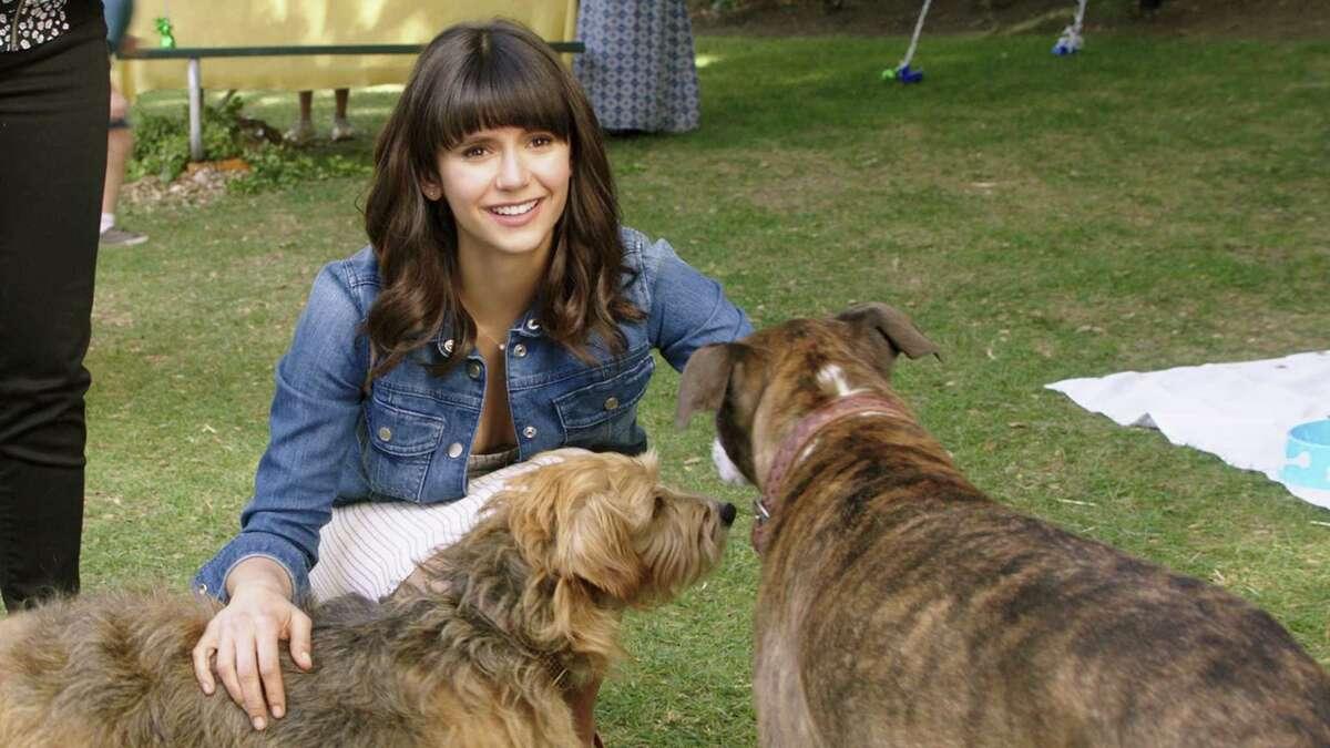 "Nina Dobrev stars in ""Dog Days"" Nina Dobrev stars as ""Elizabeth"" in director Ken Marino's DOG DAYS, a LD Entertainment release. Credit : Jacob Yakob / LD Entertainment"