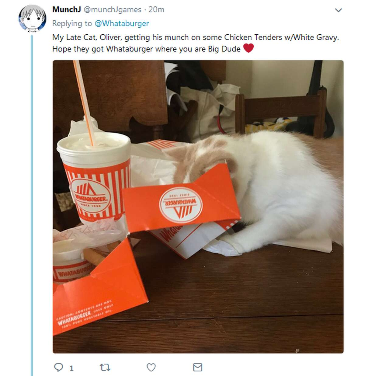@munchJgames: My Late Cat, Oliver, getting his munch on some Chicken Tenders w/White Gravy. Hope they got Whataburger where you are Big Dude