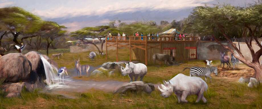 Rendering of upcoming renovations to the rhino habitat at the San Antonio Zoo. Photo: Overland Partners