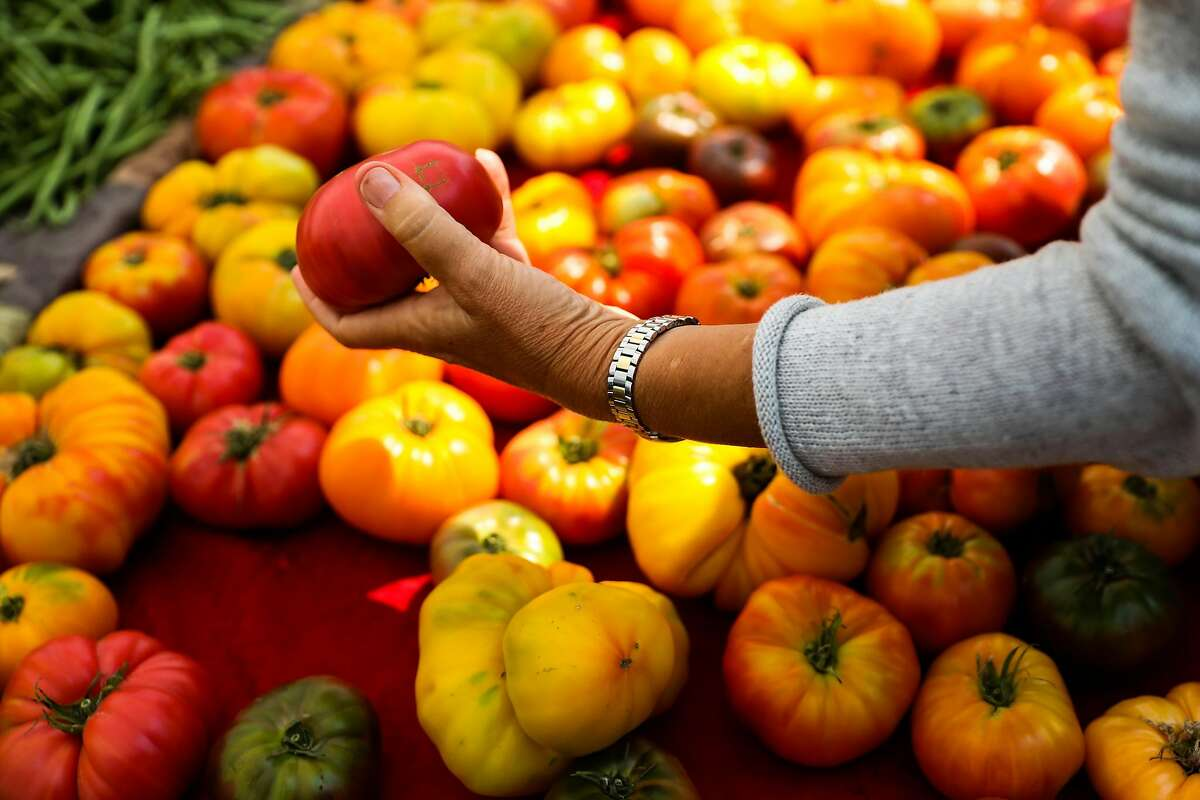 A shopper inspects a tomato at the farmers market in Berkeley, California, on Tuesday, Aug. 7, 2018.