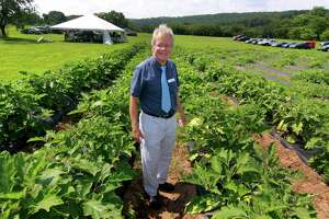 Dr. Wade Elmer poses among a crop of eggplants during the Connecticut Agricultural Experiment Station's 108th Plant Science Day at Lockwood Farm in Hamden on Wednesday.