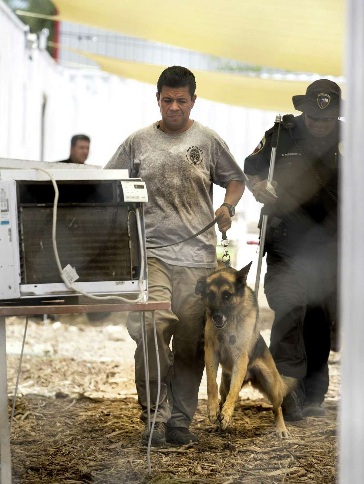 A handler moves a dog to an Animal Care Services transportation vehicle Wednesday at canine training facility Universal K9, 15329 Tradesman, near Loop 1604 on the Northwest Side. State and federal authorities served a search warrant on the organization's facility Wednesday. ACS took 26 dogs from the facility as part of the raid.