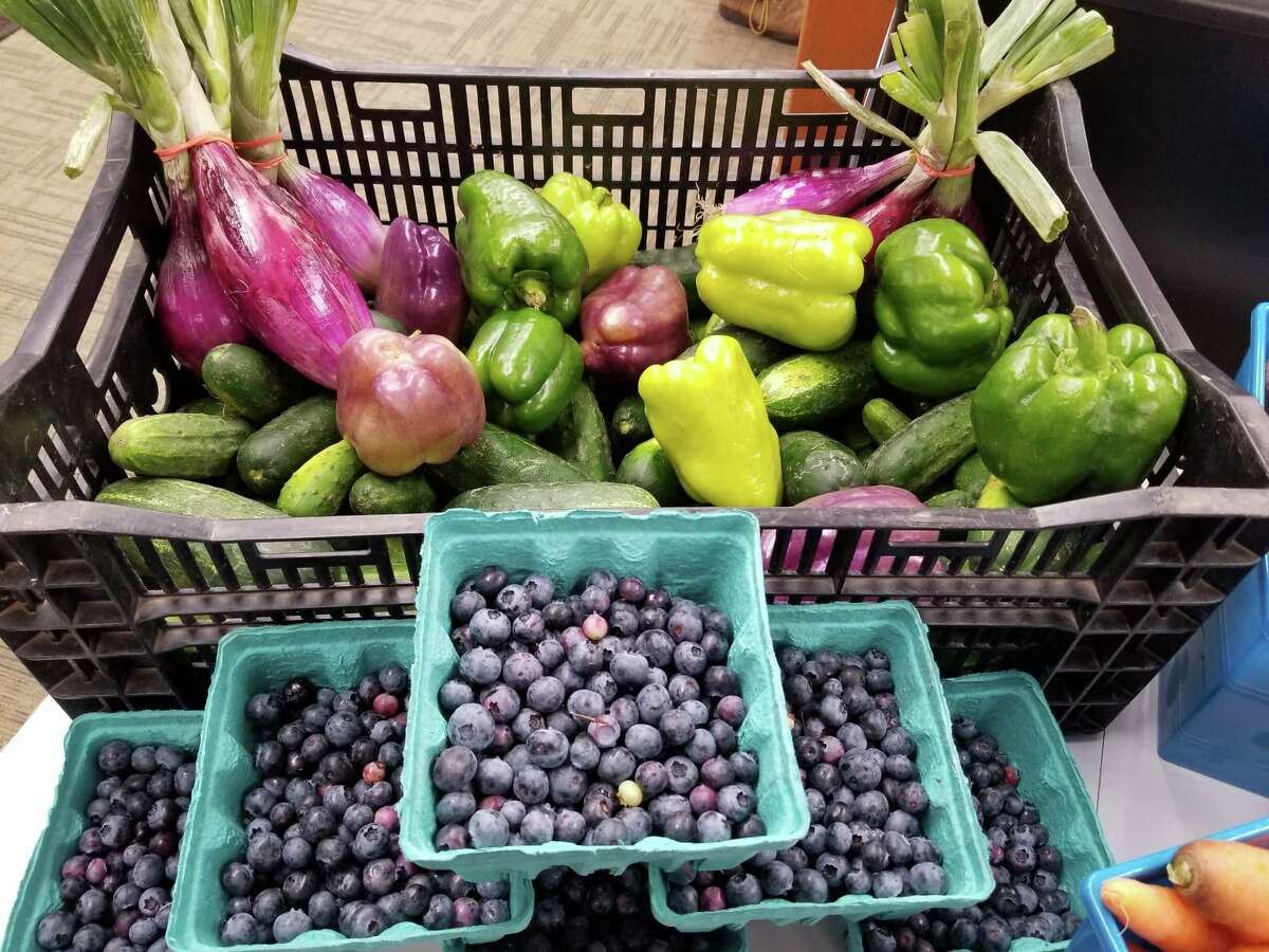 Fresh vegetables and fruit gleaned from local farmers' fields are available to Southern Adirondack Library System patrons. (Submitted photo)