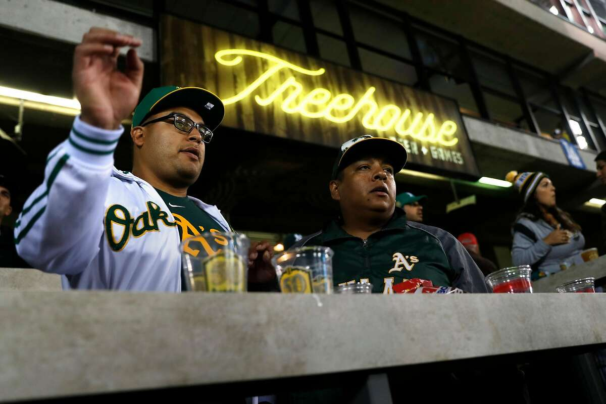 Oakland Athletics' fans Carlos Cabrera of San Jose and JoJo Quinata of Gilroy watch from the Treehouse as the A's play the Los Angeles Dodgers at Oakland Coliseum in Oakland, Calif. on Wednesday, August 8, 2018.