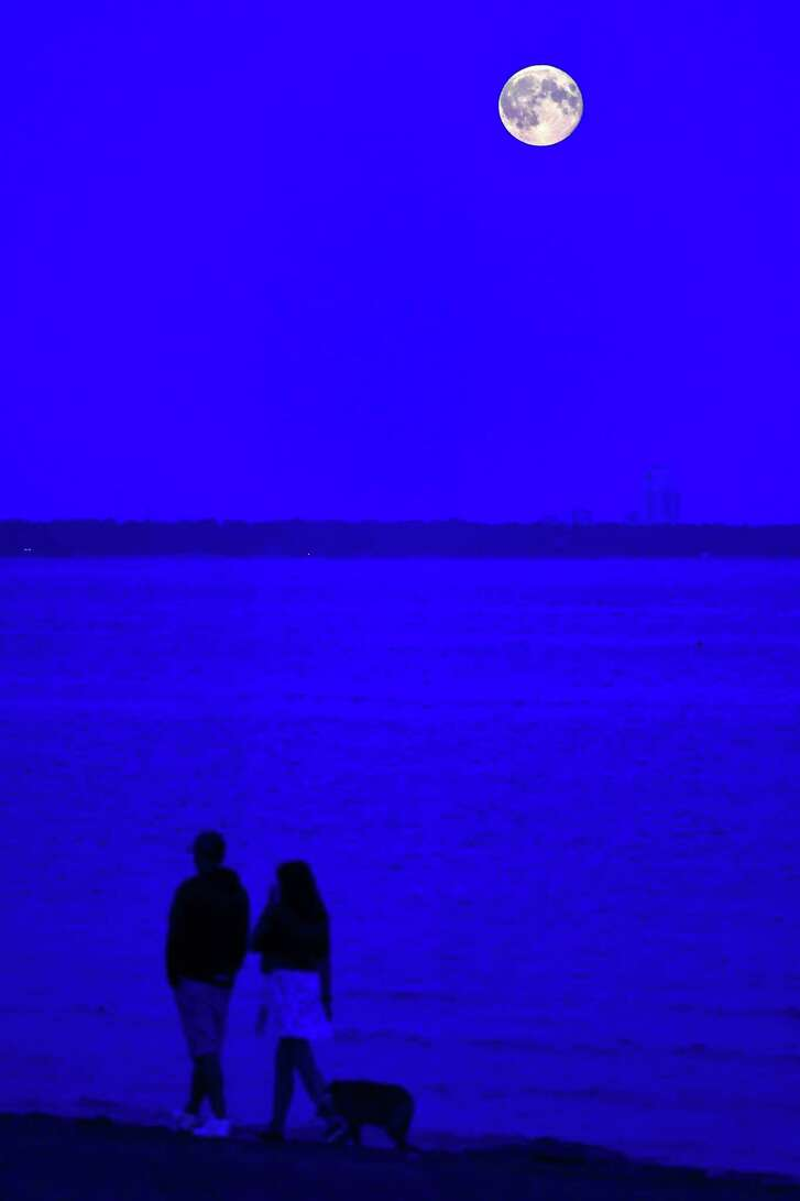 A couple walk their dog as the moon rises over a beach in Repino near Saint Petersburg early on June 29, 2018.