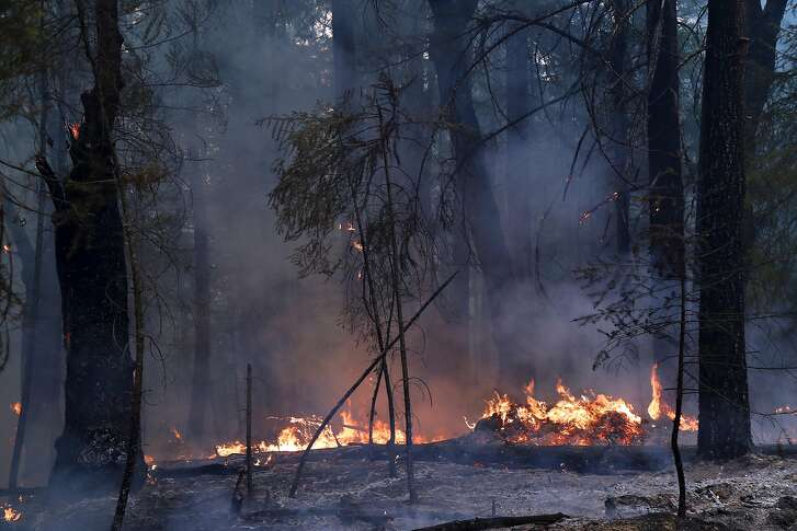 The Ranch fire burns along the side of Elk Mountain Road outside Potter Valley, Calif., Aug. 9, 2018. The Mendocino Complex fire system, a combination of the Ranch fire and the River fire, has grown to more than 300,000 acres. (Jim Wilson/The New York Times)