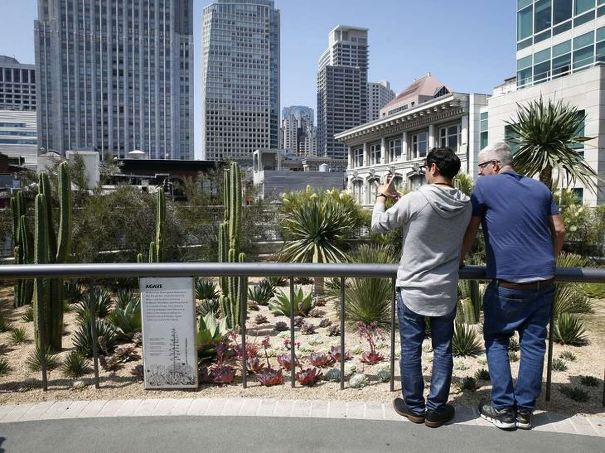 Visitors attending the grand opening check out a desert scene on the center's rooftop park.