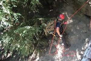 """Douglas County, Oregon search and rescue personnel search for Brian Lewinstein, 23, of Berkeley, Calif. at Toketee Falls.  Lewinstein """"crossed a safety fence to take a photograph from above the falls when he slipped and fell down the steep embankment,"""" according to the sheriff."""
