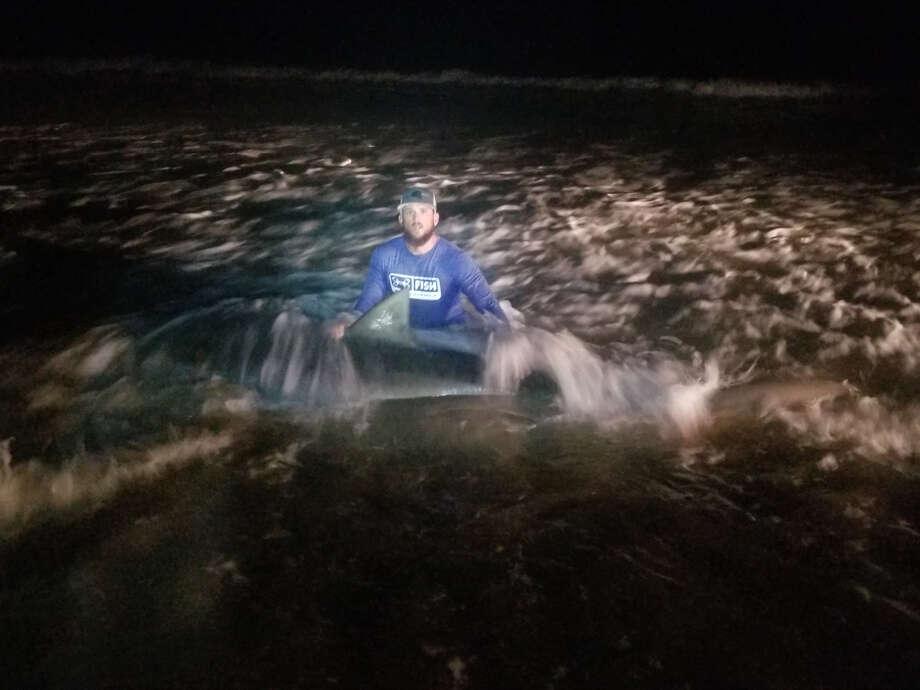 Early Saturday morning, Matthew Zuniga caught a 12-foot tiger shark off of South Padre Island Beach, he said. Photo: Courtesy Of Matthew Zuniga