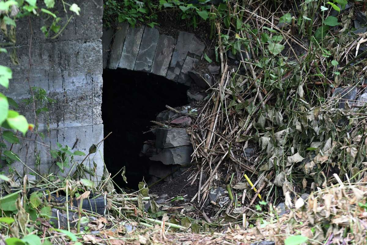 Shrubs appear to have been cleared at the entrance to a tunnel behind 766 State St. where police recovered a child's body last week on Monday, Aug. 13, 2018, in Schenectady, N.Y. (Will Waldron/Times Union)