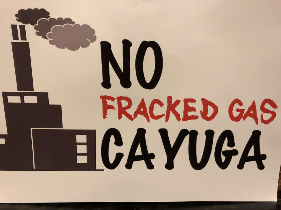 Opponents of a gas plant proposed near Cayuga Lake are urging Gov. Andrew Cuomo to kill the project.