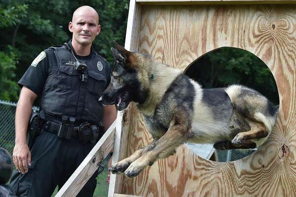 Officer Chris Brown and his K-9 partner, Loki, a sable German Shepherd placed first in the CT K9 Olympics are pictured Friday, August 10, 2018, at Orange Police Department at 314 Lambert Rd. in Orange.