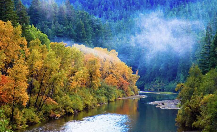 A patch of fog hovers above the Eel River along the Avenue of the Giants in Humboldt Redwoods State Park.  (Photo courtesy of Julia Sumangil.) Photo: Julia Sumangil/Flickr