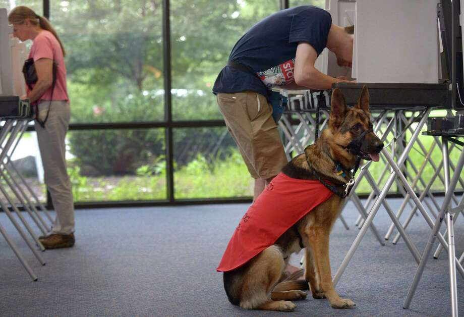 Nick Sirinakis and casts his ballot in the primary while with his Fidelco guide dog-in-training, Tango, at the Clune Center Tuesday, August 14, 2018, at Wilton High School in Wilton, Conn. Photo: Erik Trautmann / Hearst Connecticut Media / Norwalk Hour