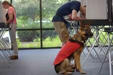 Nick Sirinakis and casts his ballot in the primary while with his Fidelco guide dog-in-training, Tango, at the Clune Center Tuesday, August 14, 2018, at Wilton High School in Wilton, Conn.