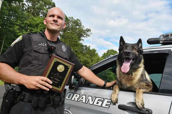 Officer Chris Brown and his a sable German Shepherd partner, Loki on Friday, at the Orange Police Department.