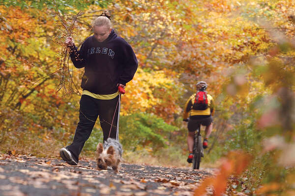 Andrea Strong, 16, of East Hampton and her Yorkshire Terrier Daphne take a walk on the Air Line Trail in East Hampton on Sunday as the autumn foliage nears its peak. Along for the walk was Andrea's father Bruce, not pictured, on the trail that stretches from East Hampton to Willimantic...........TW photo......101704
