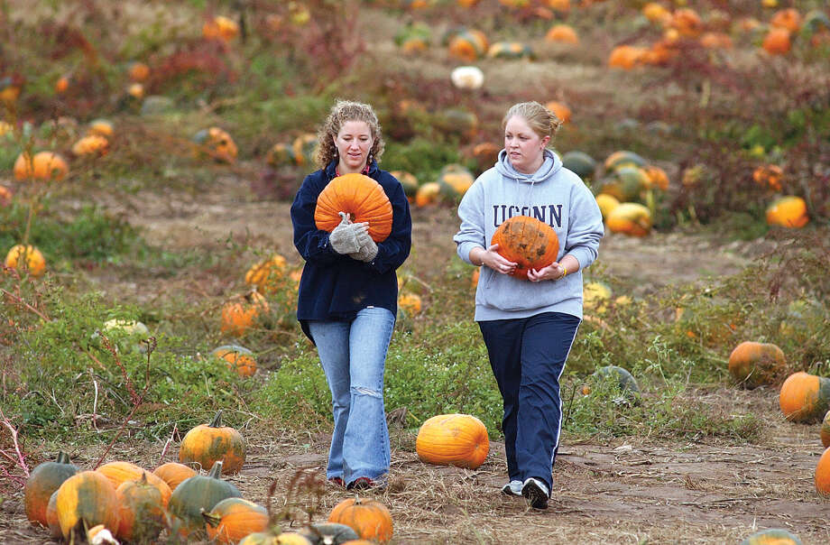 Friends Rose Salonikios and Kelly Moore pick their own pumpkins at Lyman Orchards. Photo: Middletown Press File Photo