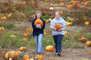 "Friends Rose Salonikios and Kelly Moore pick their own pumpkins at Lyman Orchards on Friday. ""Now we're going to pick some apples to make a pie,"" said Salonikios who is a student at Bates College. Moore attends Central Connecticut.............Tw photo.....102204"