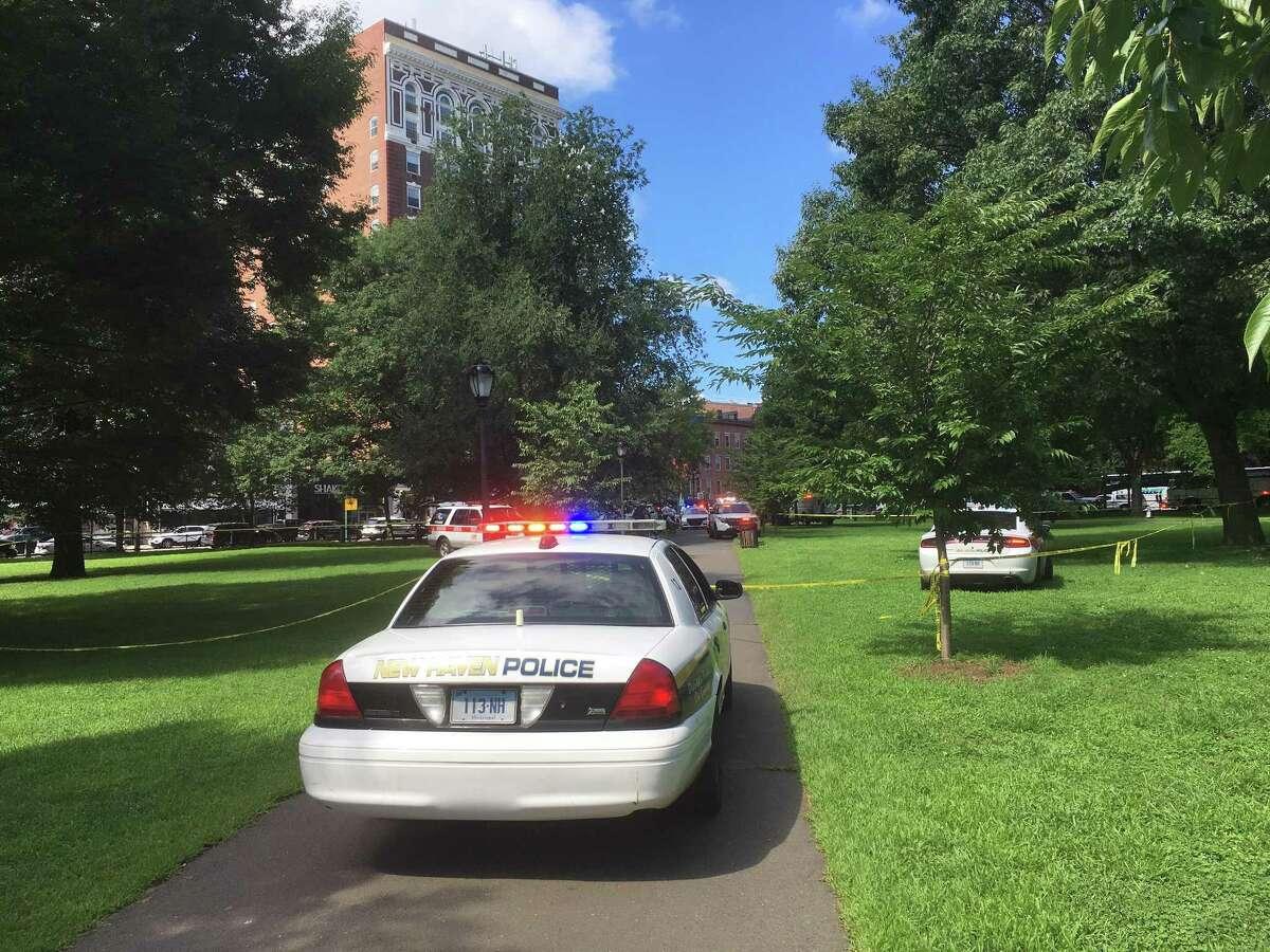 Authorities on scene of multiple reported overdoses on theNewHavenGreen speak