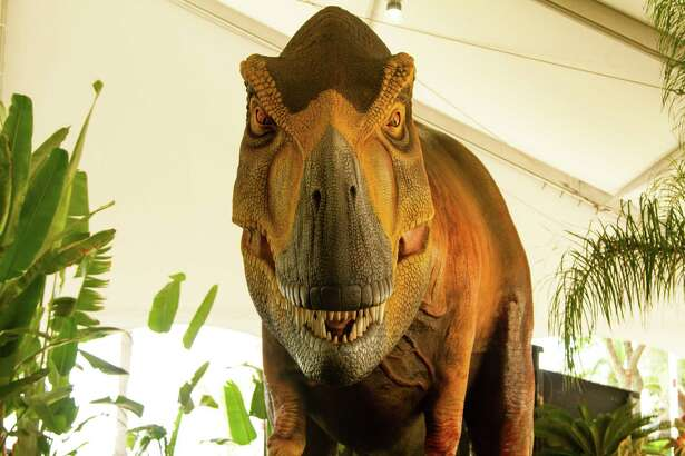Travel back in time with Moody Gardens' Dinos Alive exhibit this weekend.