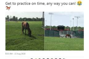 Crosby football coach Jeff Riordan tweeted pictures of a horse at the practice fields after Isaiah Kidd rode to practice on the horse on Monday, August 13