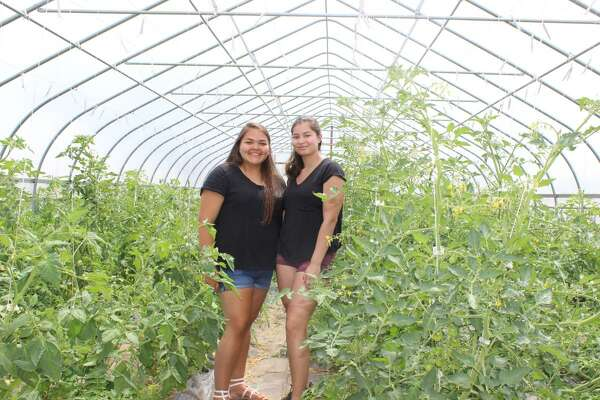 Tribal members in a working greenhouse.