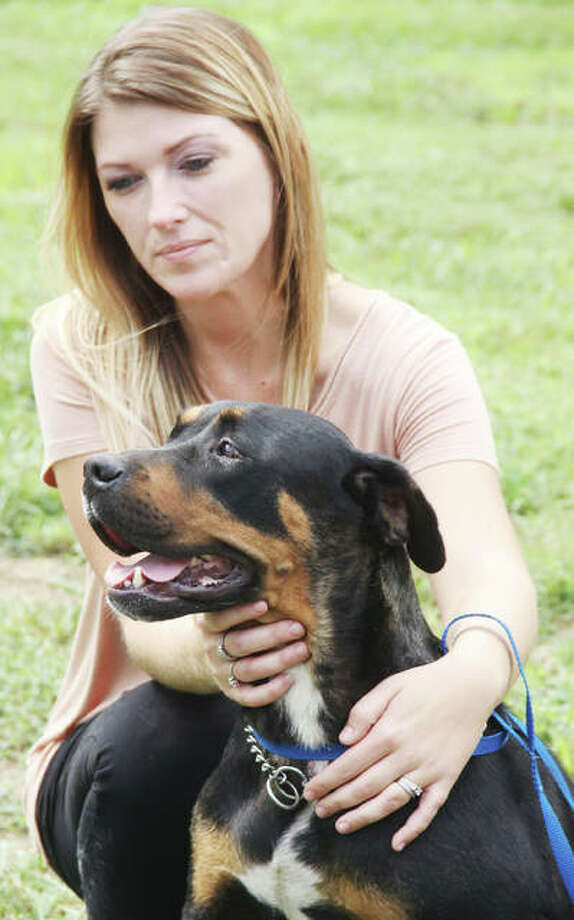 Madison County Animal Care & Control Clerk Angela Zarzeck holds a Rottweiler-mix recently brought in as a stray to the Animal Control facility, during a press conference touting several new programs. Photo:       Scott Cousins | The Telegraph