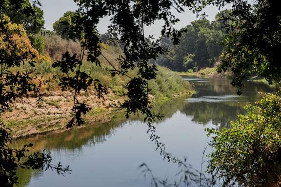 The Tuolumne River is seen from the banks of Ceres River Bluff Regional Park in Ceres, Calif. Friday, Aug. 17, 2018.