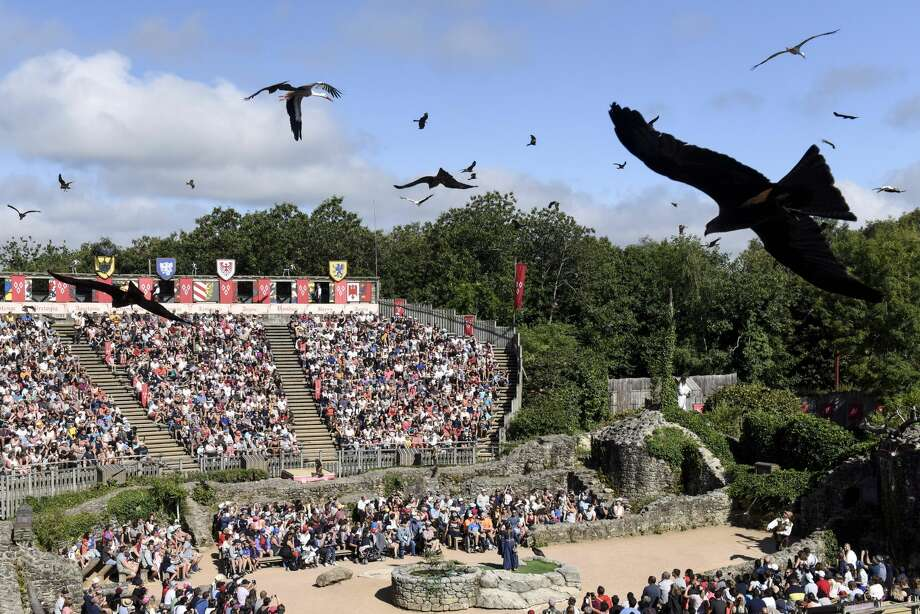 Birds perform during a show at French historical theme park Le Puy du Fou, in Les Epesses, western France on August 14, 2018. - Six crows specially trained to pick up cigarette ends and rubbish were put to work last week at a French historical theme park. (Photo by SEBASTIEN SALOM GOMIS / AFP)        (Photo credit should read SEBASTIEN SALOM GOMIS/AFP/Getty Images) Photo: SEBASTIEN SALOM GOMIS/AFP/Getty Images