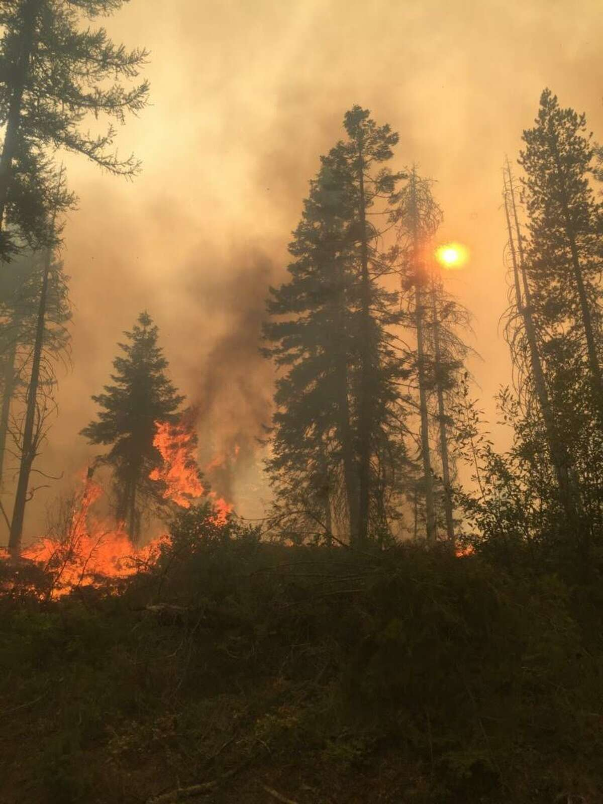 A view of the Boyds Fire near Kettle Falls, Washington. The climate crisis has caused massive fires to Western North America, this summer in Alaska and Northern Canada. , extending from