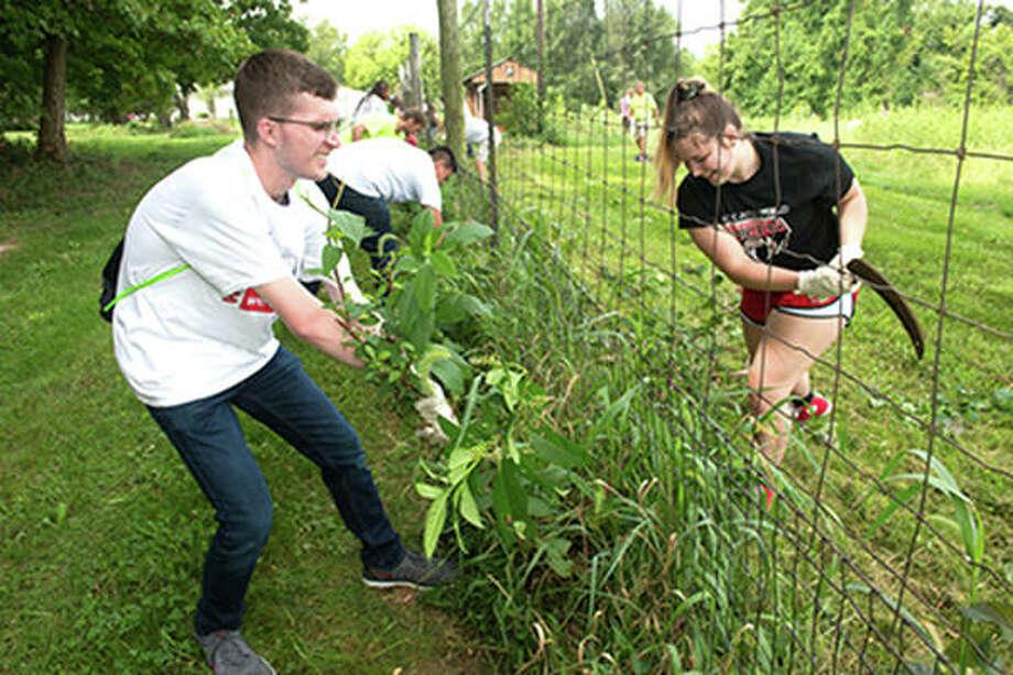 SIUE freshmen attack their weeding assignment with gusto at LaVista CSA Farm. Photo:       SIUE Photo