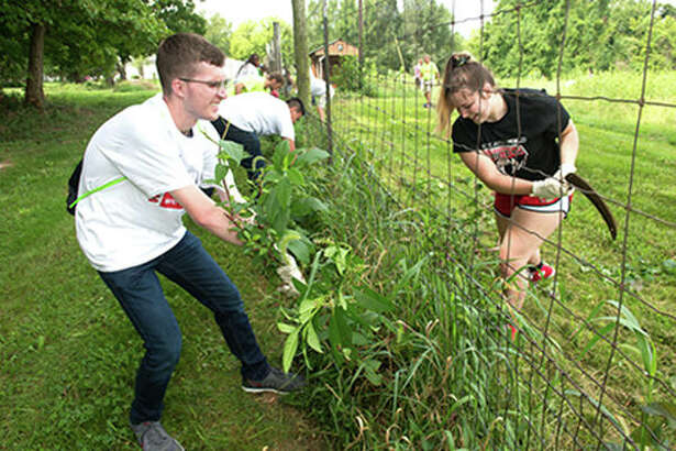 SIUE freshmen attack their weeding assignment with gusto at LaVista CSA Farm.