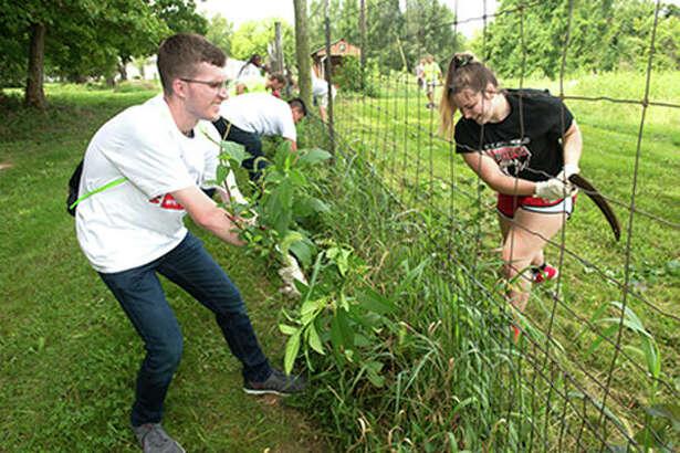 SIUE freshmen attack their weeding assignment with gusto at LaVista CSA Farm.